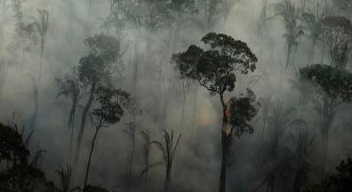 Bolsonaro esvazia INPE de gestores para não combater desmate na Amazônia