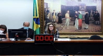 CCJ começa série de audiências públicas sobre reforma administrativa