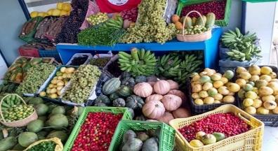 Segurança alimentar é obrigação prioritária do Estado