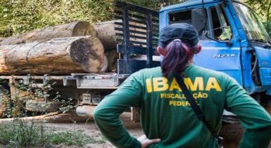 Sem concursos desde 2012, Ibama pode ter superintendências fechadas em 2019