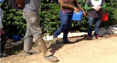 Starbucks revê certificação de qualidade de fazenda flagrada em Minas Gerais